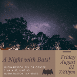 A Night with Bats!