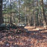 Kirby Weekend Trail Work
